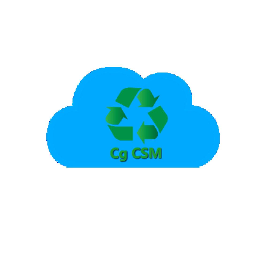 Cg CSM